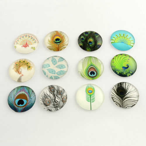 Cabochon multicolor from the bird V Mix 12 mm, 10 x